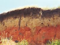 Çernozyum Toprakları - 2