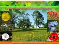 Türkiye'nin Bitki Varlığı (Sunum) Sunusu