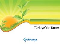 Türkiye'de Tarım (Sunum)