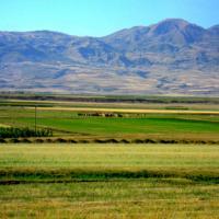 Erzurum Ovası