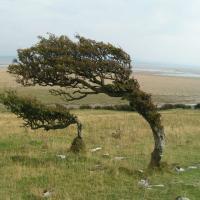 Rüzgarın Hızı ve Şiddeti