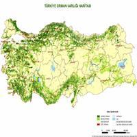 Türkiye'de Bitki Formasyonları