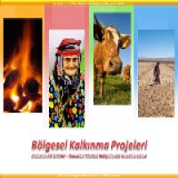 Türkiye'nin Bölgesel Kalkınma Projeleri Sunusu